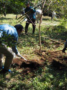 「協同の森」の植樹作業