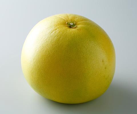 写真: 晩白柚