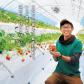 常に先を見据えた、最良の判断を。いちご農家全体の活性化の一助になりたい。光田 淳悟さん / 玉名市横島町