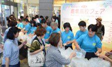 【農業高校フェア】実習の作品味わって JA女性部と料理も/JAグループ熊本