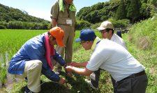 【営農指導】営農指導員ら鳥獣害対策学ぶ/JA熊本中央会・連合会