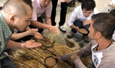 【小麦】パン・麺用小麦実需者が視察/JA熊本市