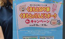 【キャンペーン】「くまもとSPF豚」「くまもとのりんどうポーク」 食べて焼き肉当てて/JA熊本経済連