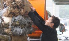 【正月飾り】正月向け「金竹」「銀竹」出荷順調/JAかみましき