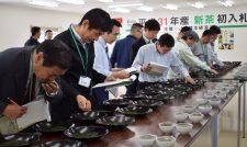 【茶】色・味・香り確認一番茶初入札/JA熊本経済連
