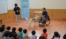 【介助犬】お仕事 園児理解深める/JA共済連熊本とJAくま