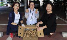 【ジャガイモ】ジャガイモ 食べてね! 市の子ども食堂へ提供 JA熊本市女性部